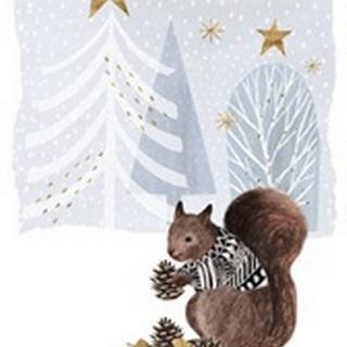 Cozy Christmas Collection B