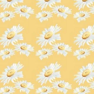 Daisy Sunshine Collection H