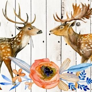 Dear Deer Collection D