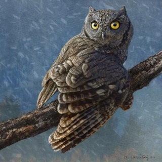 Owl in Winter I