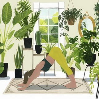 Indoor Asana Collection A