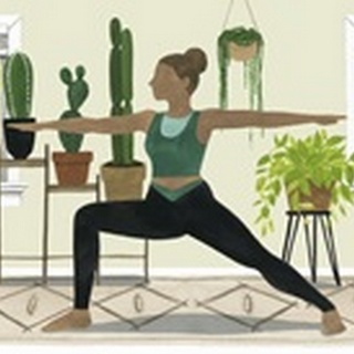 Indoor Asana Collection D
