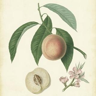 Plantation Peaches I