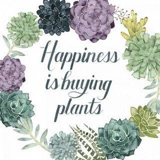 Plant Happiness I