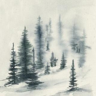 Misty Winter II