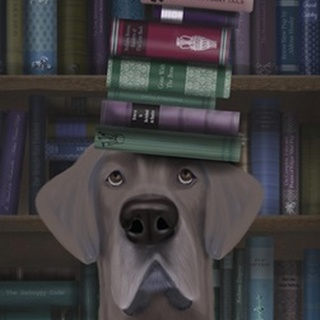 Great Dane and Books