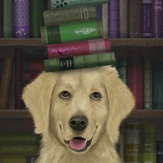 Golden Retriever and Books