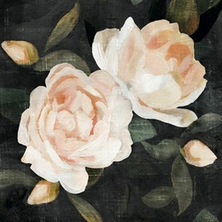 Soft Garden Roses II