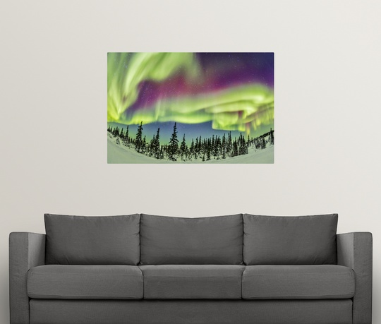 Poster-Print-Wall-Art-entitled-Aurora-borealis-over-Churchill-Manitoba-Canada